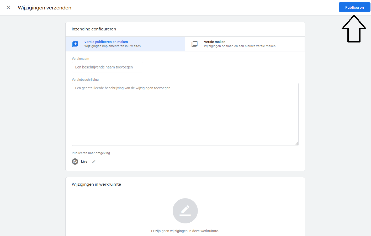 Google Tag Manager - publiceren container
